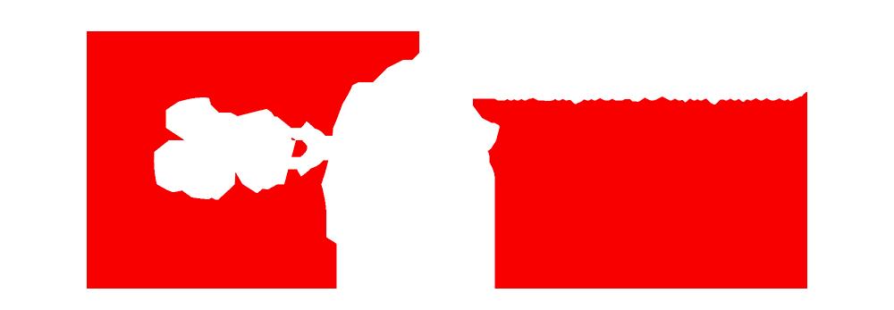 ReplusTissue™